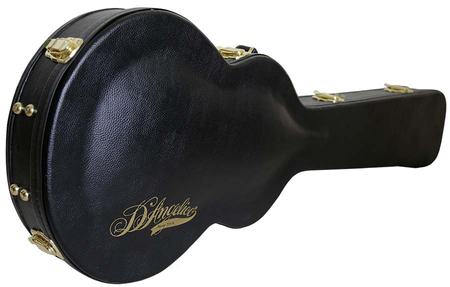 D'Angelico Bass case